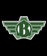 Logo Bolt NEU
